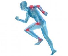 Judėjimo sistemos ligos