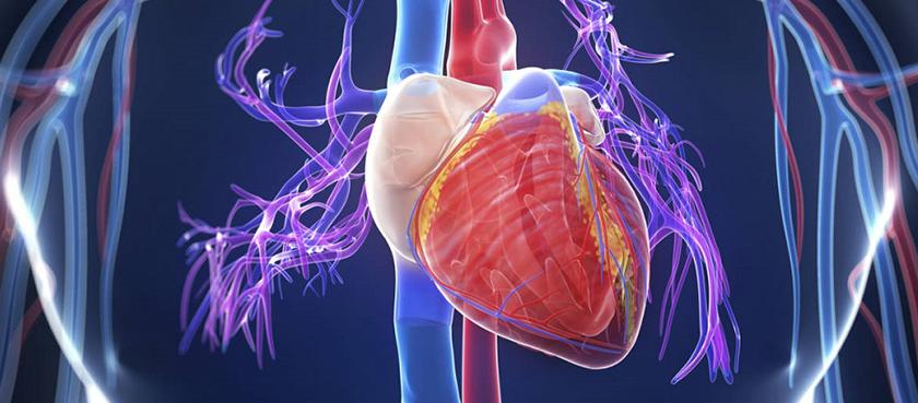 išeminė širdies liga kaip hipertenzijos komplikacija